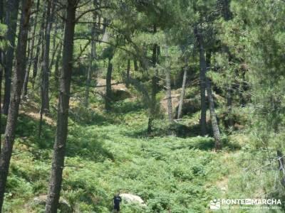 Pinares de Piedralaves; pueblos abandonados en madrid viajes tramuntana rutas de las caras
